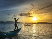 Ağ Atan Balıkçı Yapbozu Oyna