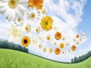 Bahar Çiçeklerinin Kokusu Yapbozu Oyna