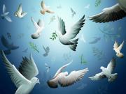 Beyaz Güvercinler Yapbozu Oyna