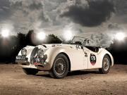 Beyaz Jaguar Yapbozu Oyna