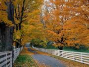 Bir Sonbahar Sessizliği Yapbozu