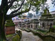 Budist Hac Merkezi Varanasi Yapbozu Oyna