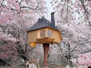 Çay Evi-Japonya Yapbozu Oyna