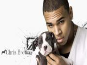 Chris Brown Yapbozu