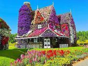 Dubai'de Çiçekli Ev Yapbozu Oyna