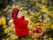Elma Yiyen Kırmızılı Çocuk Yapbozu