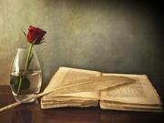 Gül ve Kitap Yapbozu Oyna
