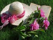 Hasır Şapka ve Pembe Güller Yapbozu Oyna