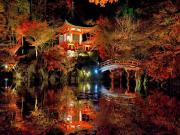 Japon Bahçesindeki Yansıma Yapbozu