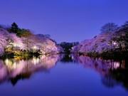 Japonya Osaka Yapbozu Oyna