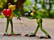 Kalbini Veren Yeşil Kurbağa Yapbozu