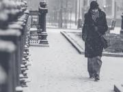 Karda Yürümek Yapbozu