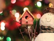 Kardan Adam ve Kuş Yuvası Yapbozu