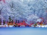 Karlarla Örtülü Parktaki Kırmızı Köprü Yapbozu Oyna