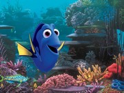 Kayıp Balık Dory Filmi Yapbozu Oyna