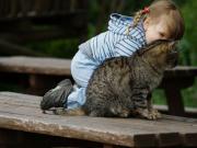 Kedisiyle Konuşan Kız Yapbozu Oyna