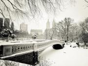 Kışın Central Park Yapbozu Oyna