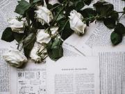 Kitap Sayfalarındaki Beyaz Güller Yapbozu Oyna