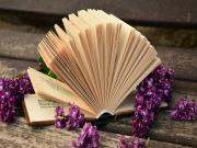 Kitap Sevgisi Yapbozu Oyna