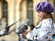 Kuşları Besleyen Çocuk Yapbozu