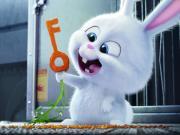 Minik Tavşanın Gizli Anahtarı Yapbozu Oyna
