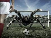Örümceğe Karşı Penaltı Yapbozu Oyna