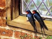 Pencere Kenarındaki Kuşlar Yapbozu Oyna