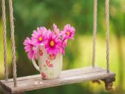 Salıncaktaki Pembe Çiçek Yapbozu