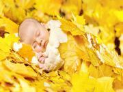 Sarı Yapraklar ve Bebek Yapbozu Oyna