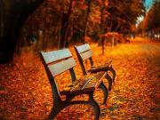 Sonbaharın Sessizliği Yapbozu Oyna