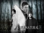 Supernatural-Doğaüstü Yapbozu Oyna