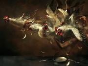 Tavukların Ölüm Korkusu Yapbozu