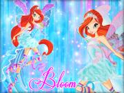 Winx Bloom Yapbozu Oyna