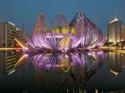 Wujin-Lotus Konferans Merkezi Yapbozu